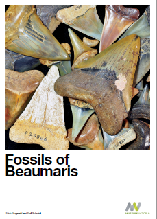 Museum Fossil Book